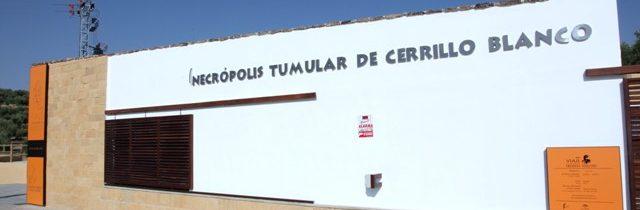 Visitas Guiadas a Cerrillo Blanco