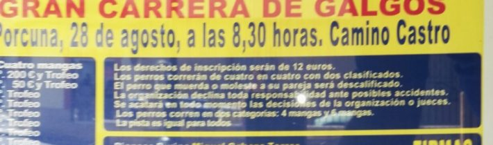 "Gran carrera de galgos ""Feria Real de Porcuna"""