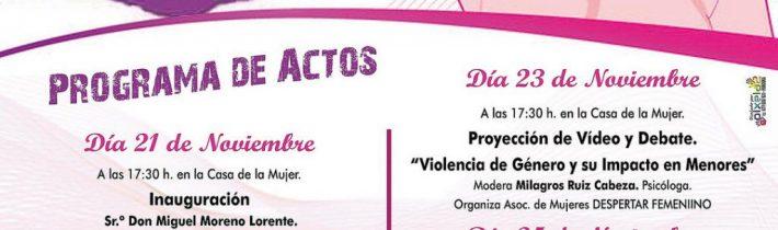 Actos del Día Internacional contra la Violencia de Género