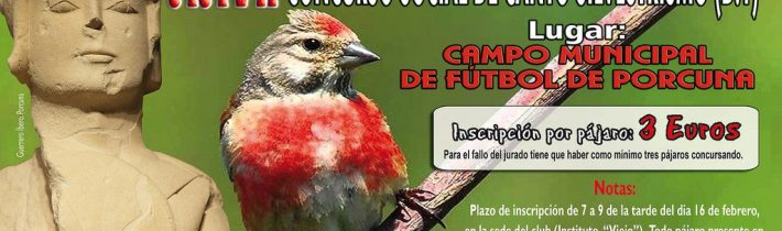 XXVII Concurso Social de Canto Silvestrismo (D.1)