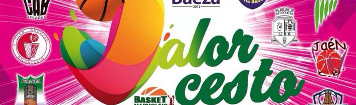 Fiesta ValorCesto Preminibasket