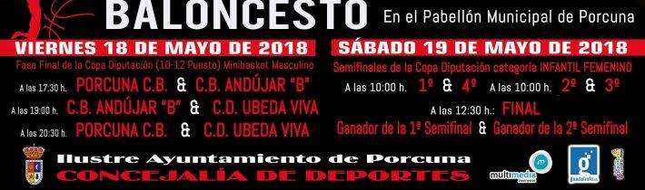 Baloncesto: Fase Final de la Copa Diputación