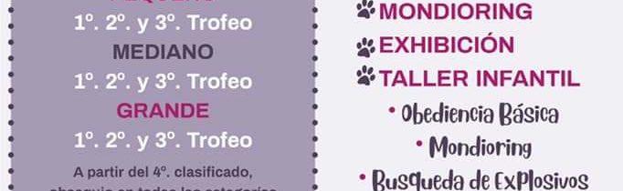 Concentración canina y exhibición